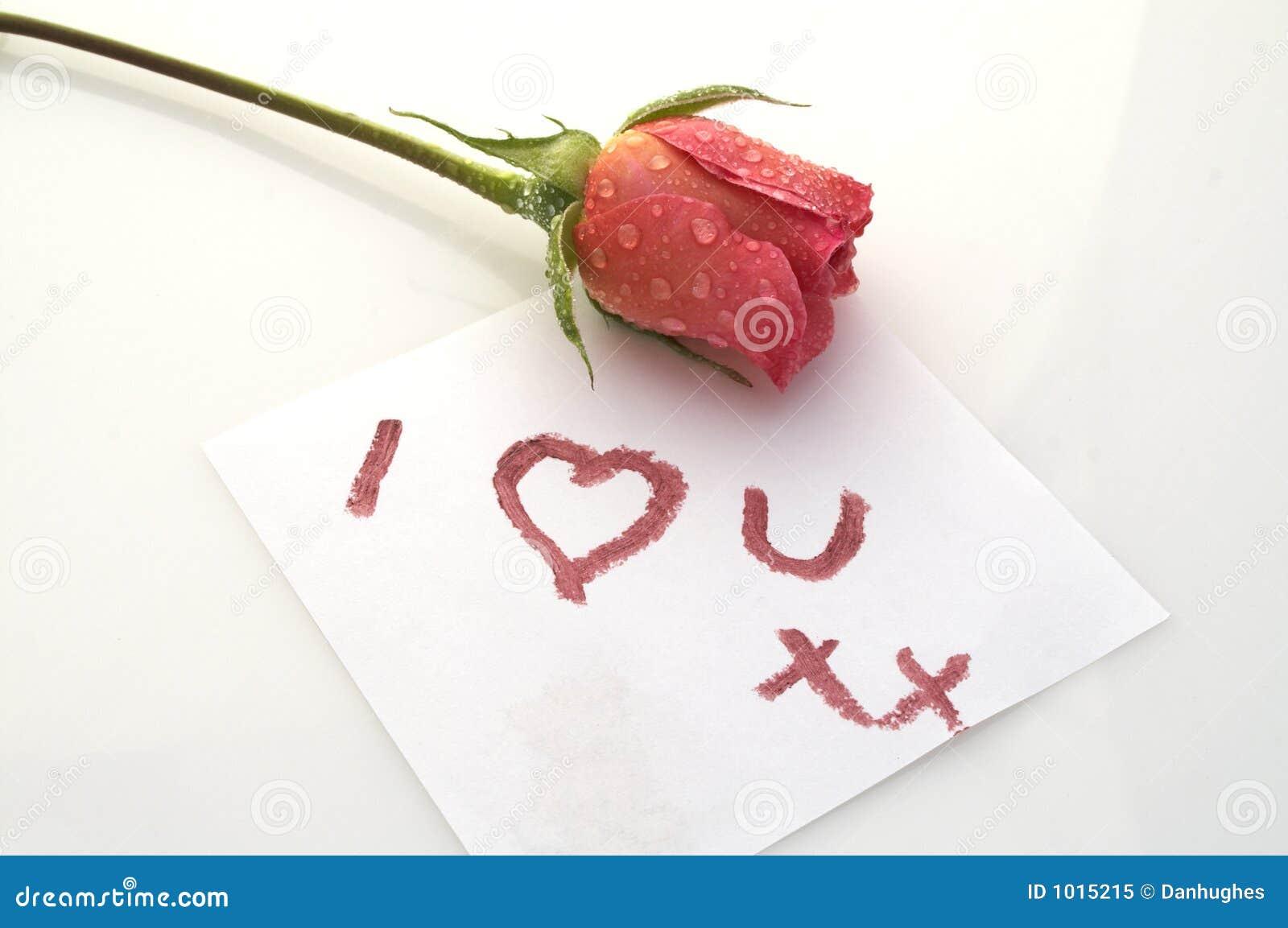 I Love You Rose Royalty Free Stock Photo - Image: 1015215