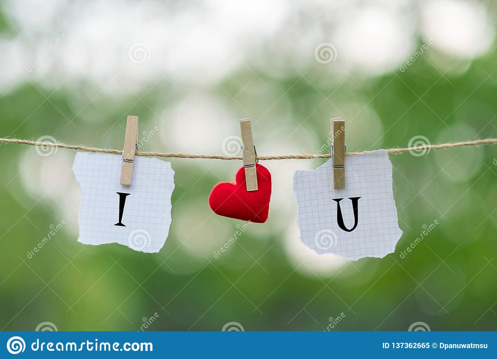 I LOVE YOU word on paper and red heart shape decoration hanging on line with copy space for text on green nature background. Love