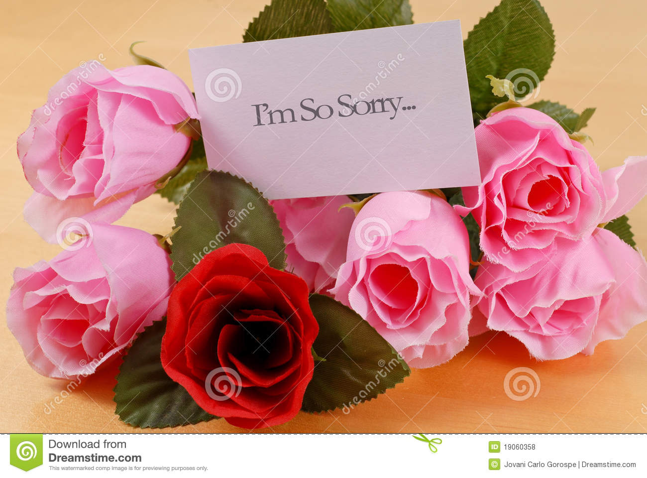 Sorry Stock Images Download 9393 Royalty Free Photos