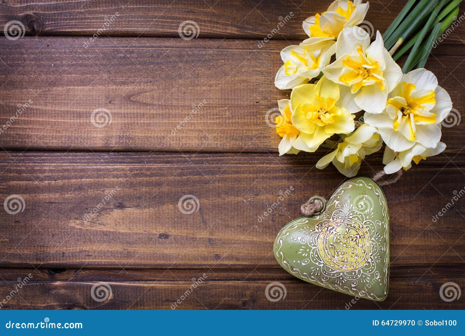 I narcisi freschi di giallo della molla fiorisce e h decorativa verde