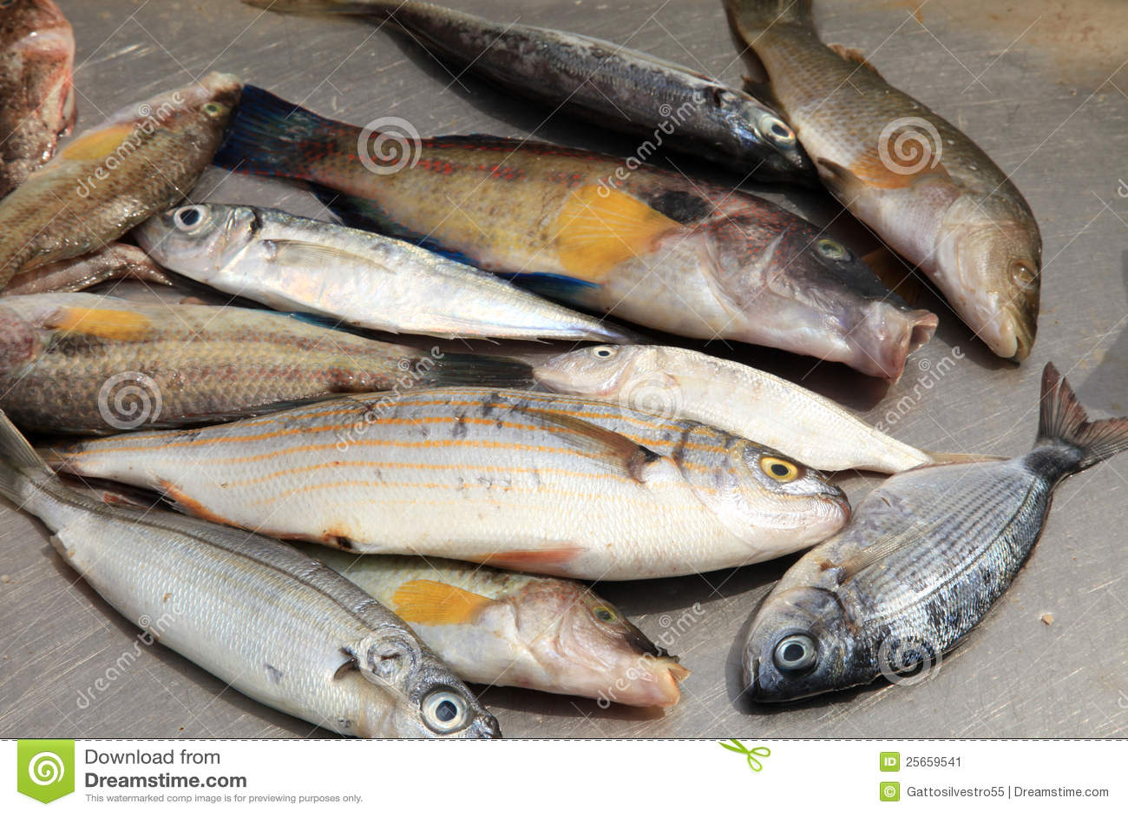 Pesca russa di Grandi laghi