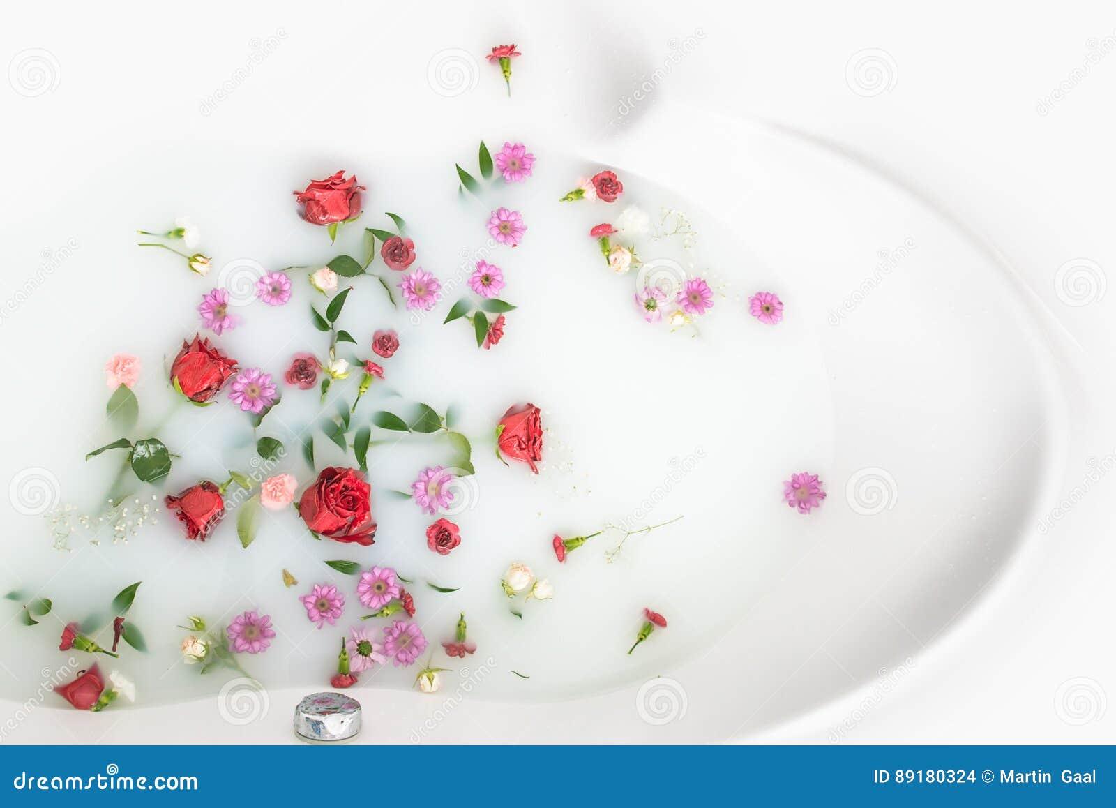 I petali e le foglie del fiore della miscela nel bagno del latte, nel fondo o nella struttura per il massaggio e la stazione term