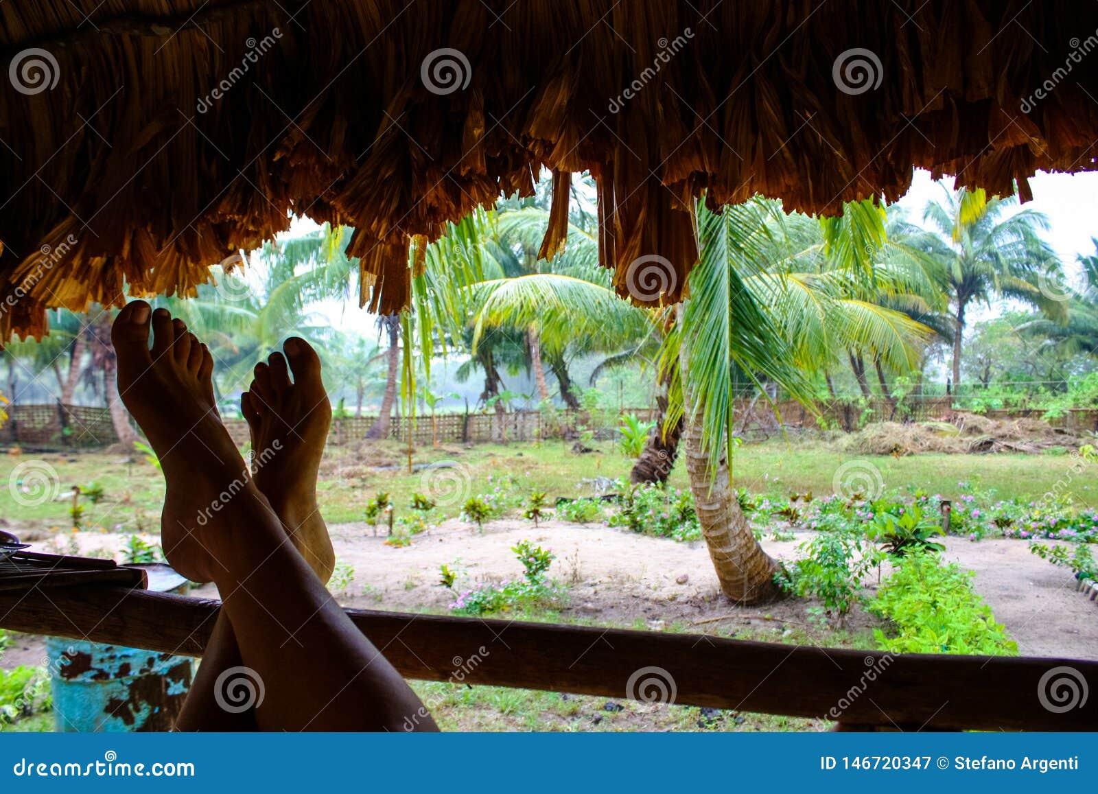 I piedi che pendono contro la a recintano una capanna della giungla
