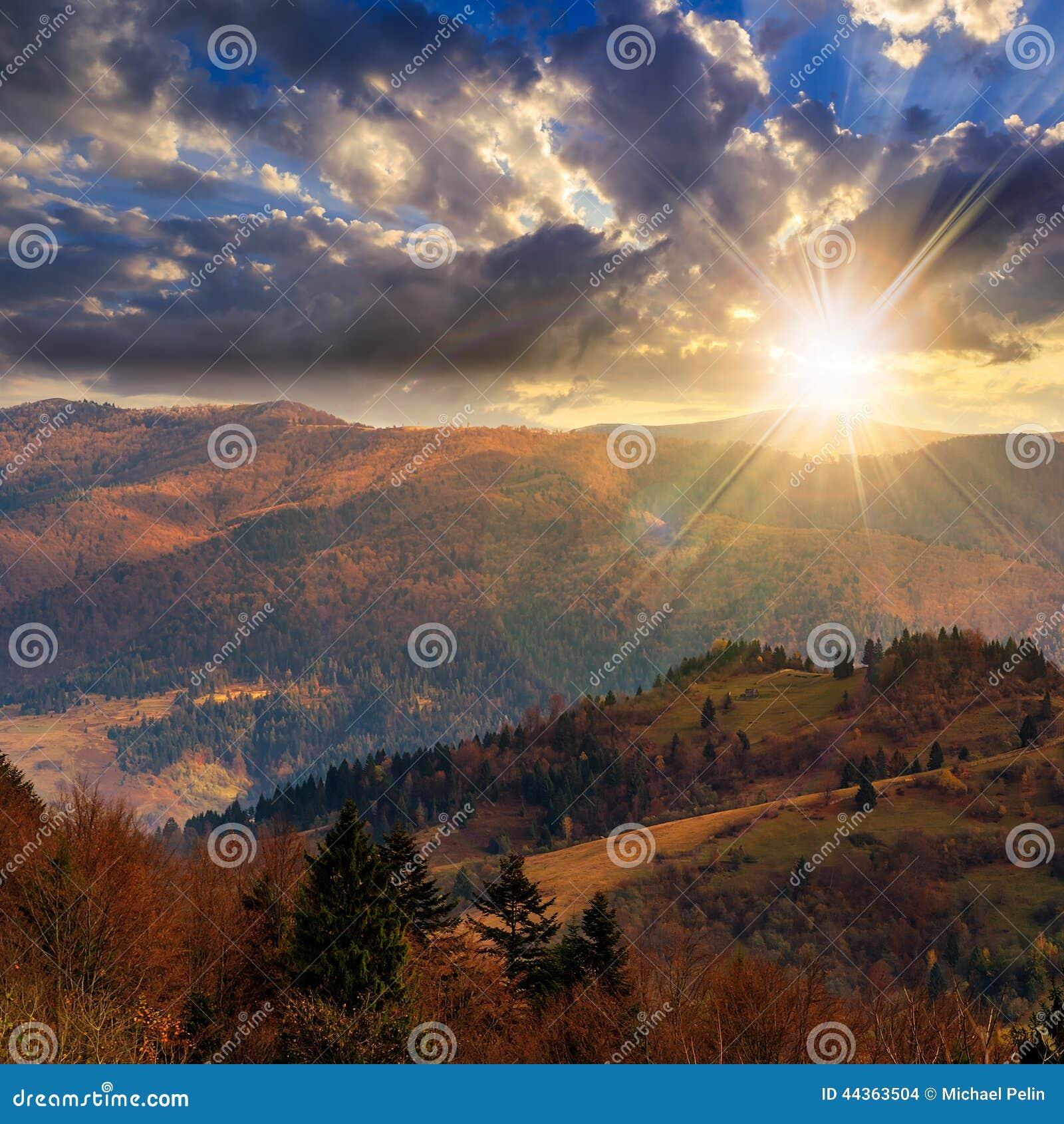 I pini si avvicinano alla valle in montagne sul pendio di collina al tramonto