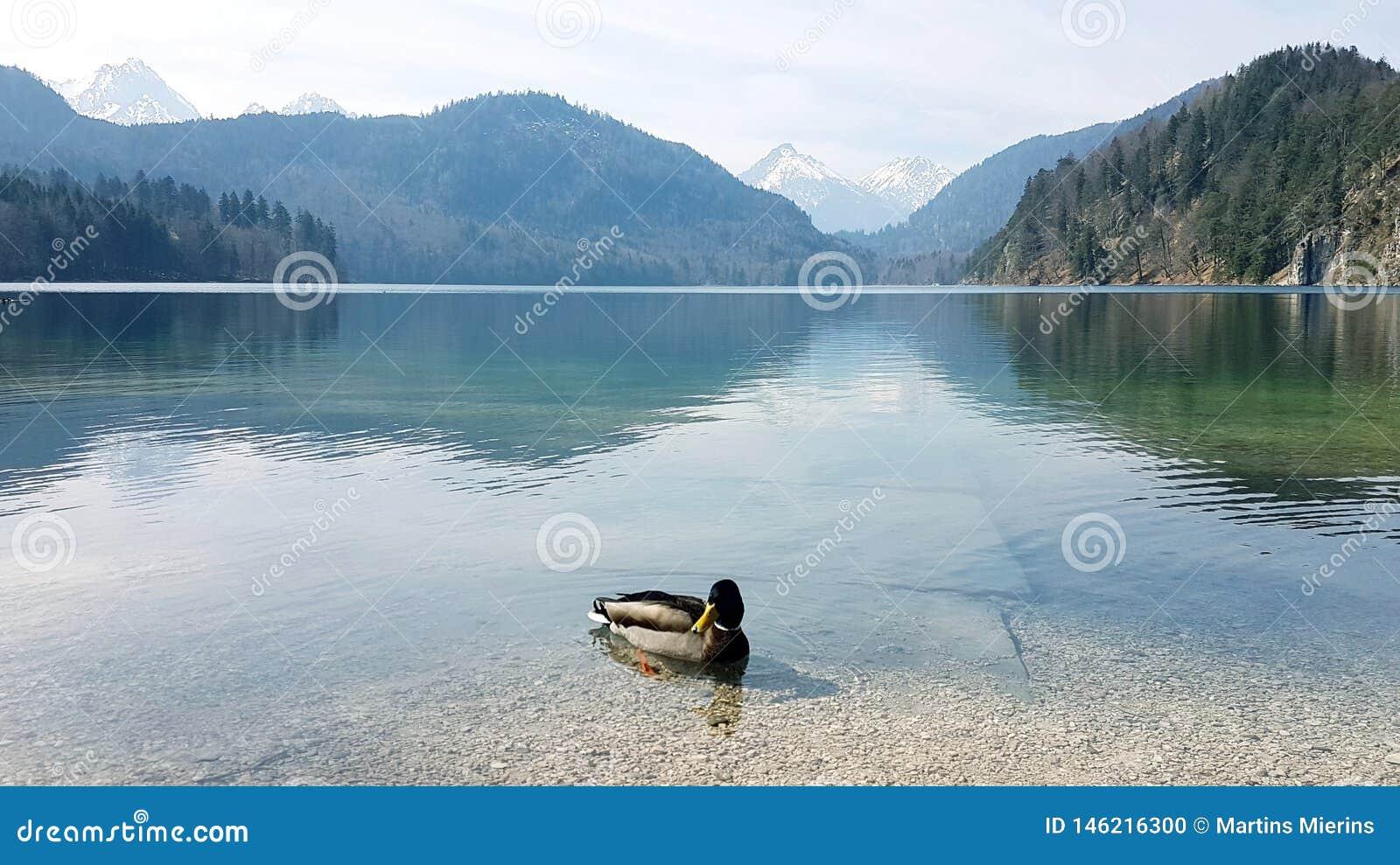 And i sjön vid berg