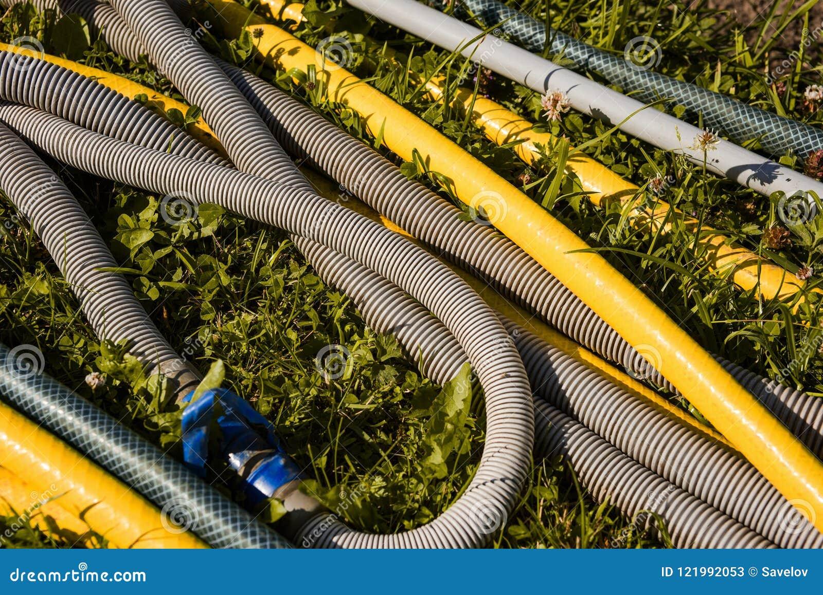 I tubi flessibili di giardino è nastro blu acciambellato