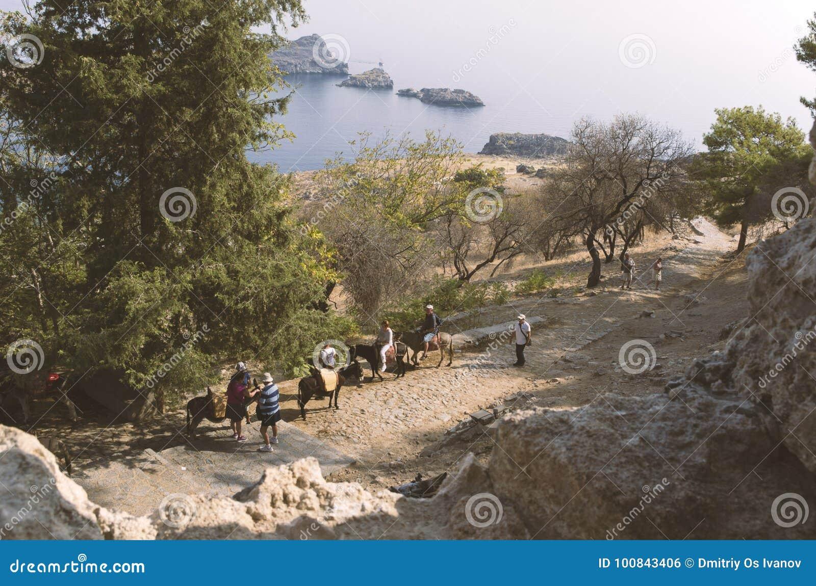 I turisti guidano gli asini in Lindos su un mare del fondo