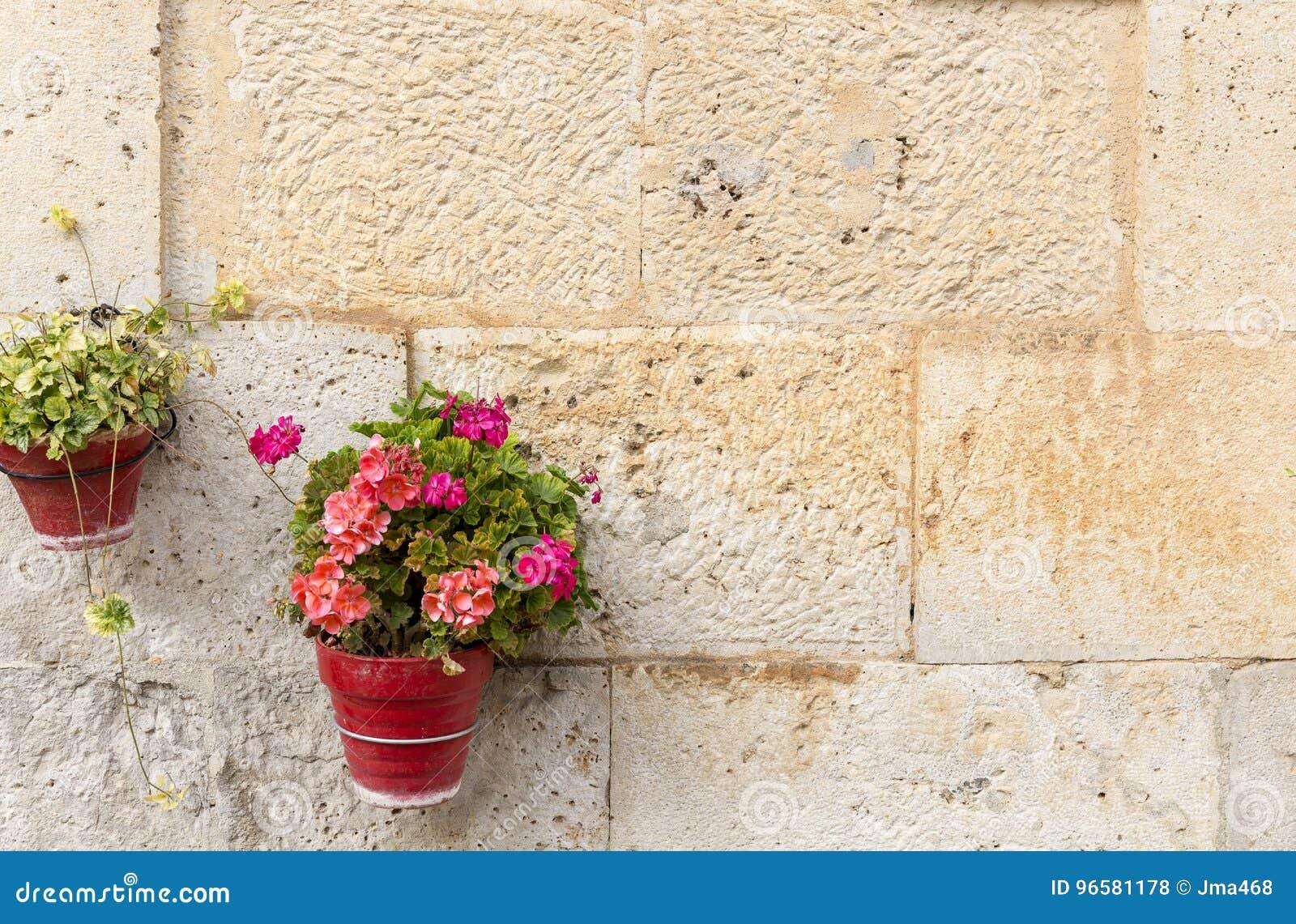 I vasi da fiori su una parete fatta di pietra con il for Decorazione vasi