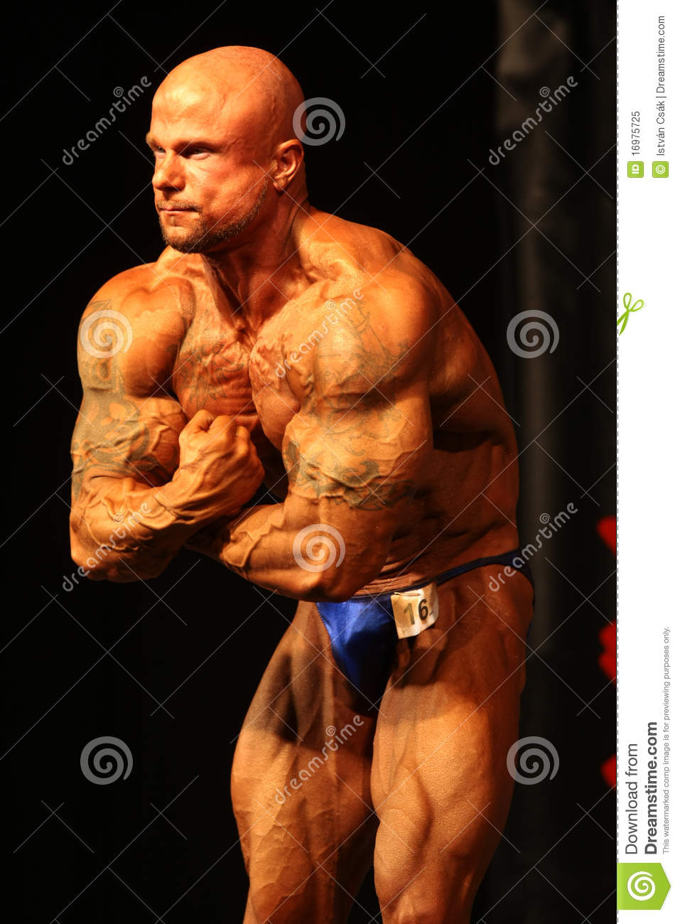 IBFF Bodybuilding World Championship Editorial Image
