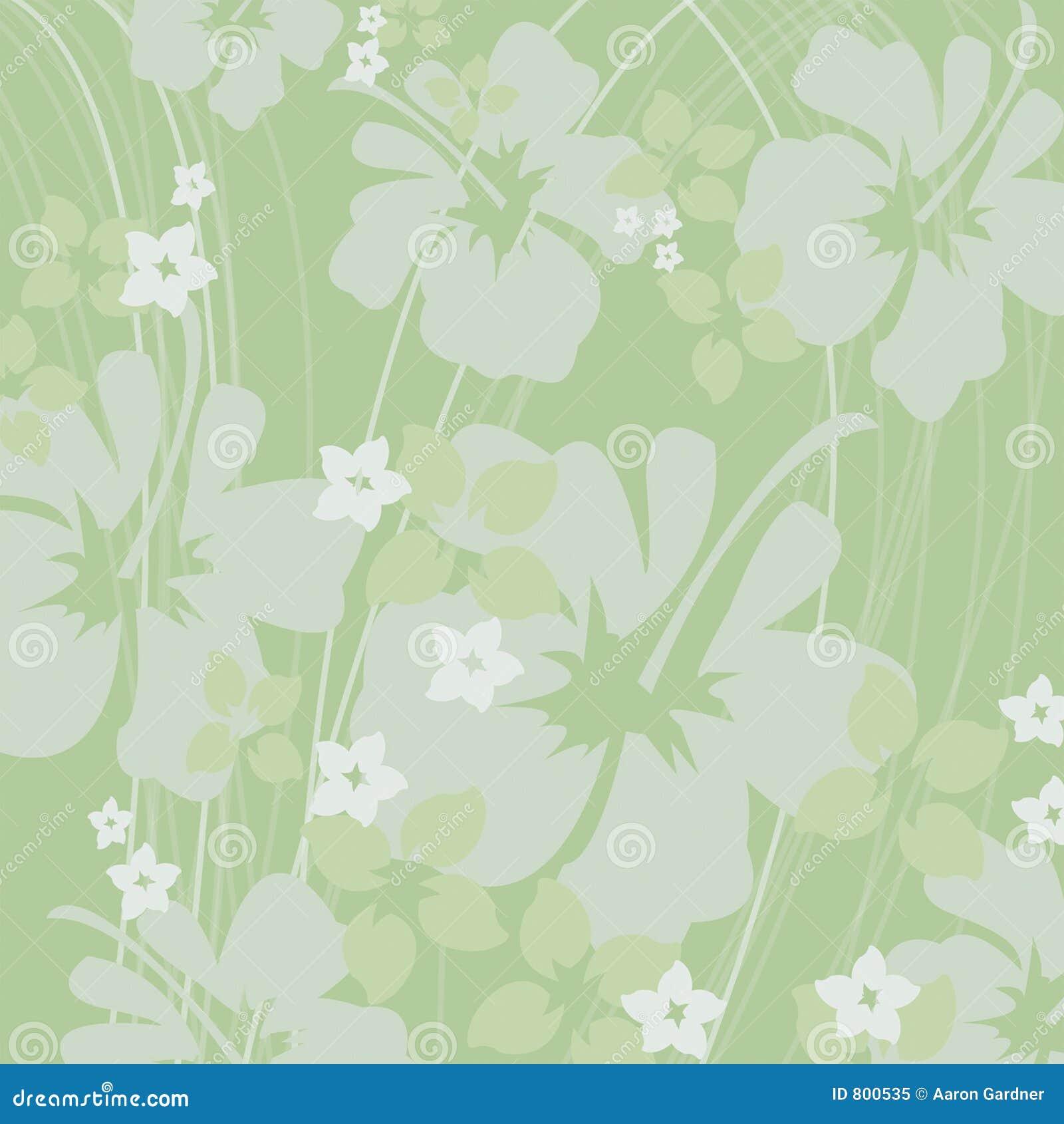 Green Hibiscus