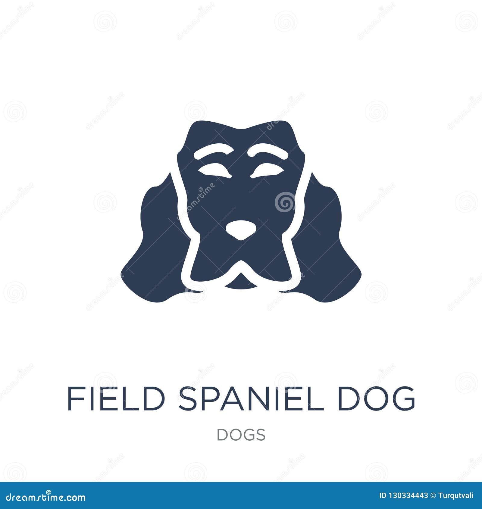 Icône de chien d épagneul de champ Ico plat à la mode de chien d épagneul de champ de vecteur