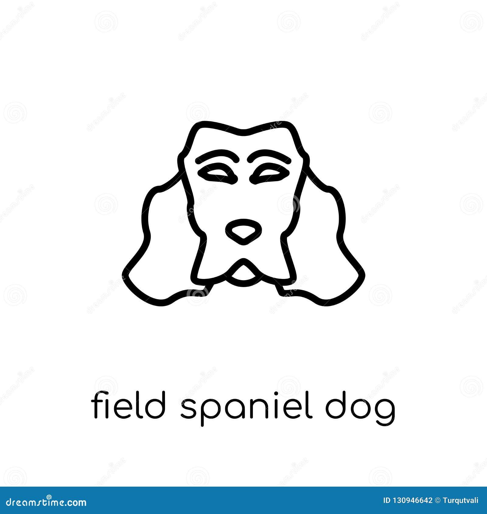 Icône de chien d épagneul de champ Champ de vecteur linéaire plat moderne à la mode S