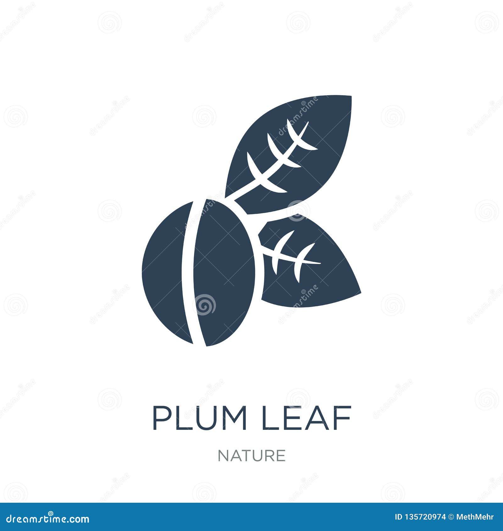 Icône de feuille de prune dans le style à la mode de conception icône de feuille de prune d isolement sur le fond blanc apparteme