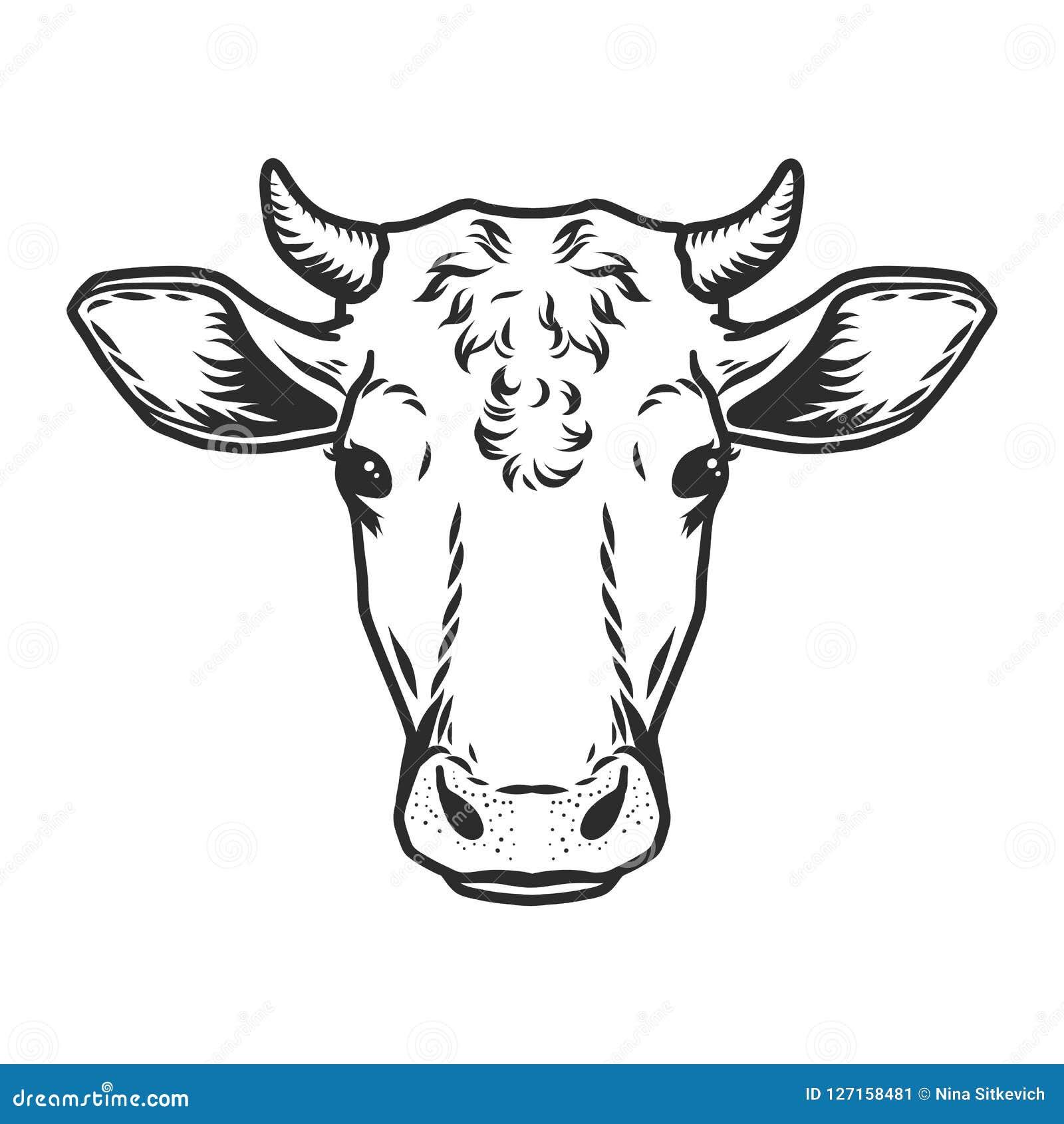 Icone Principale De Vecteur De Vache Style Dessine Par Contour Illustration De Vecteur Illustration Du Vache Icone 127158481