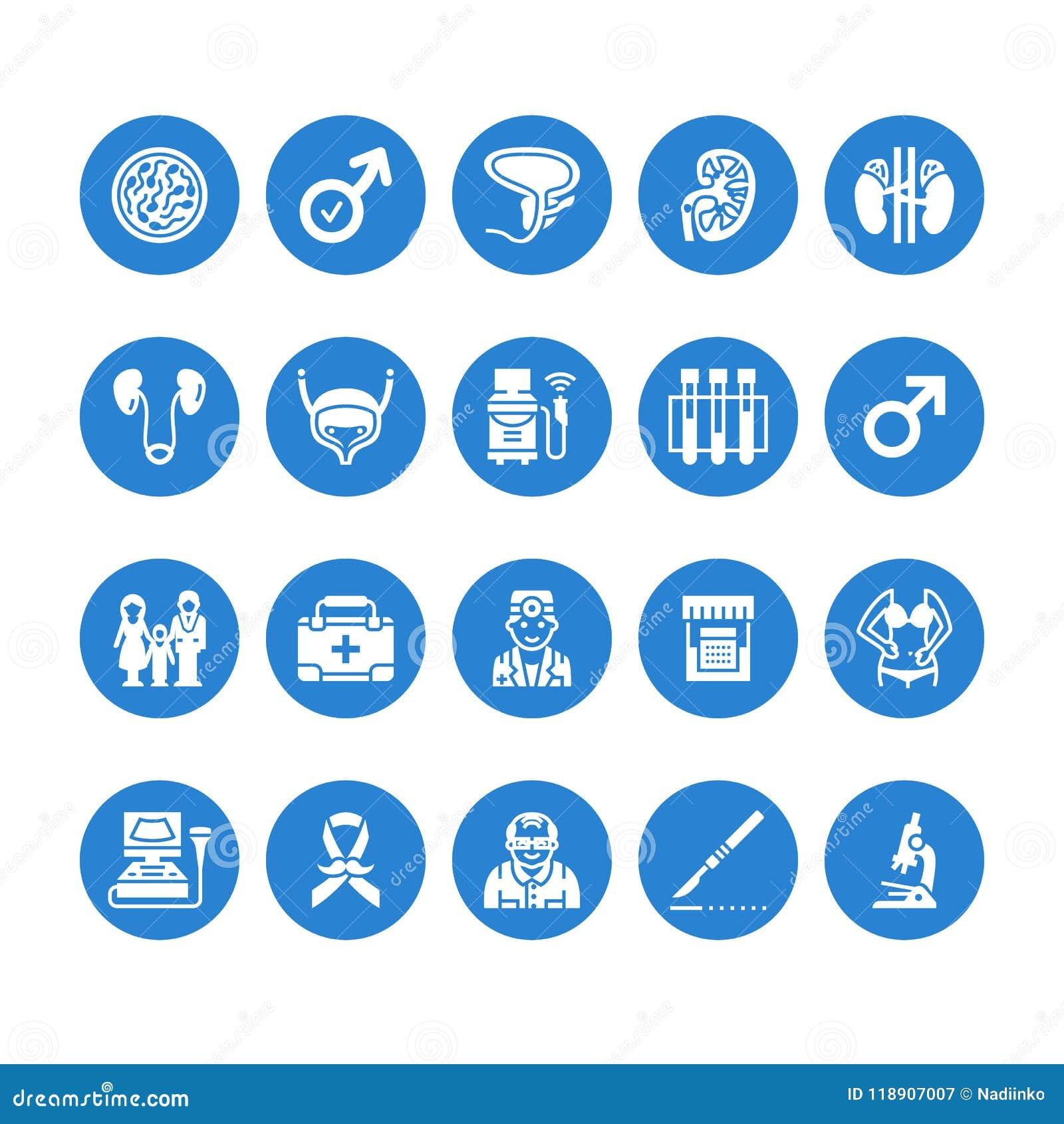 Icônes plates de glyph de vecteur d urologie Urologue, vessie, reins, glandes surrénales, prostate Pictogrammes médicaux pour la