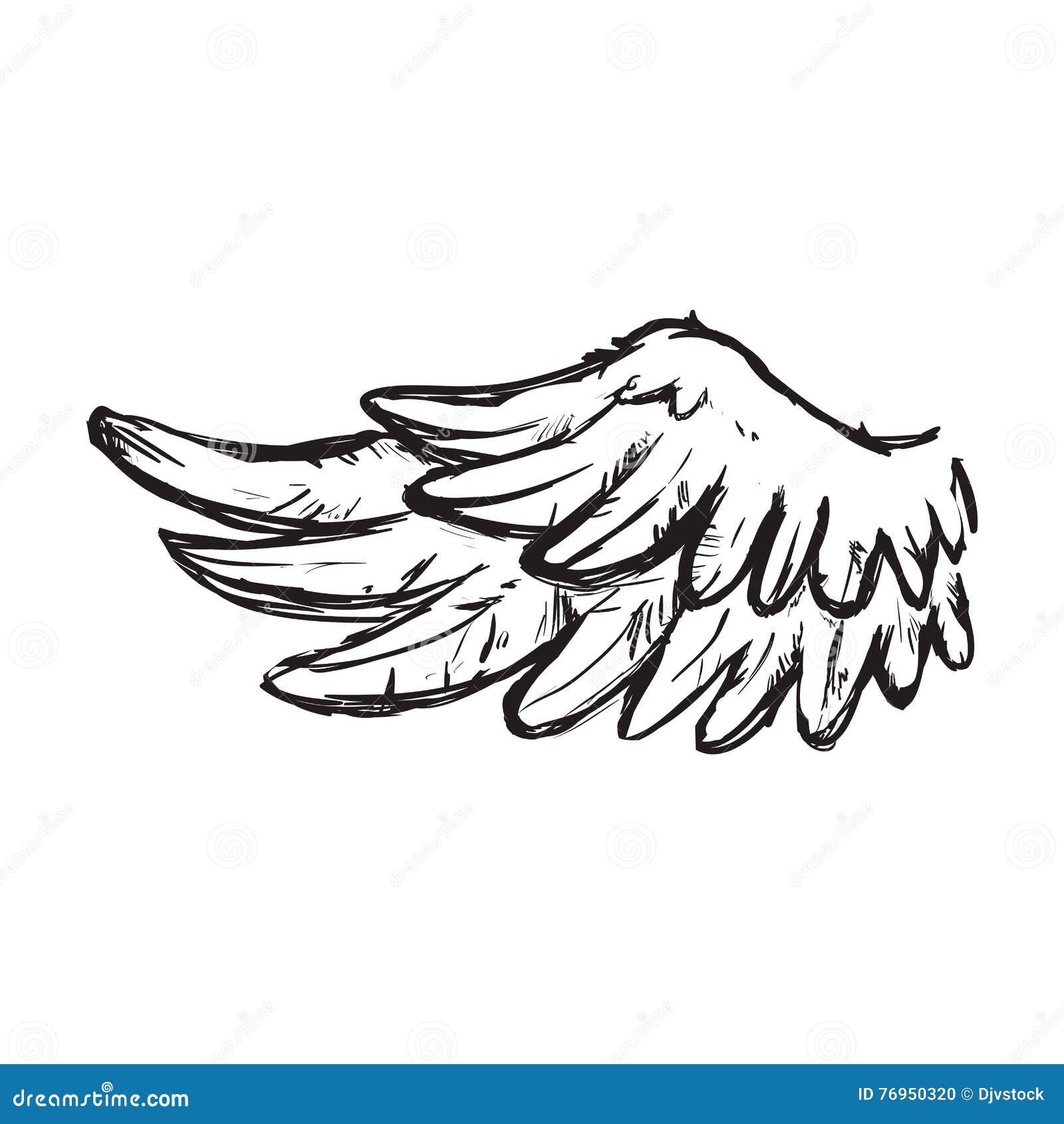 Icône Animale D Ange D Oiseau De Plume D Aile Dessin De