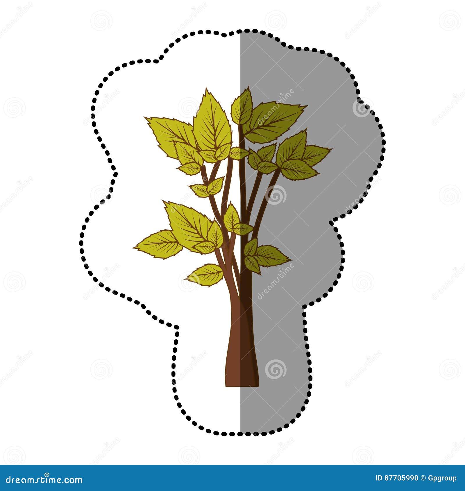 Icône d arbre de vert de chaux belle