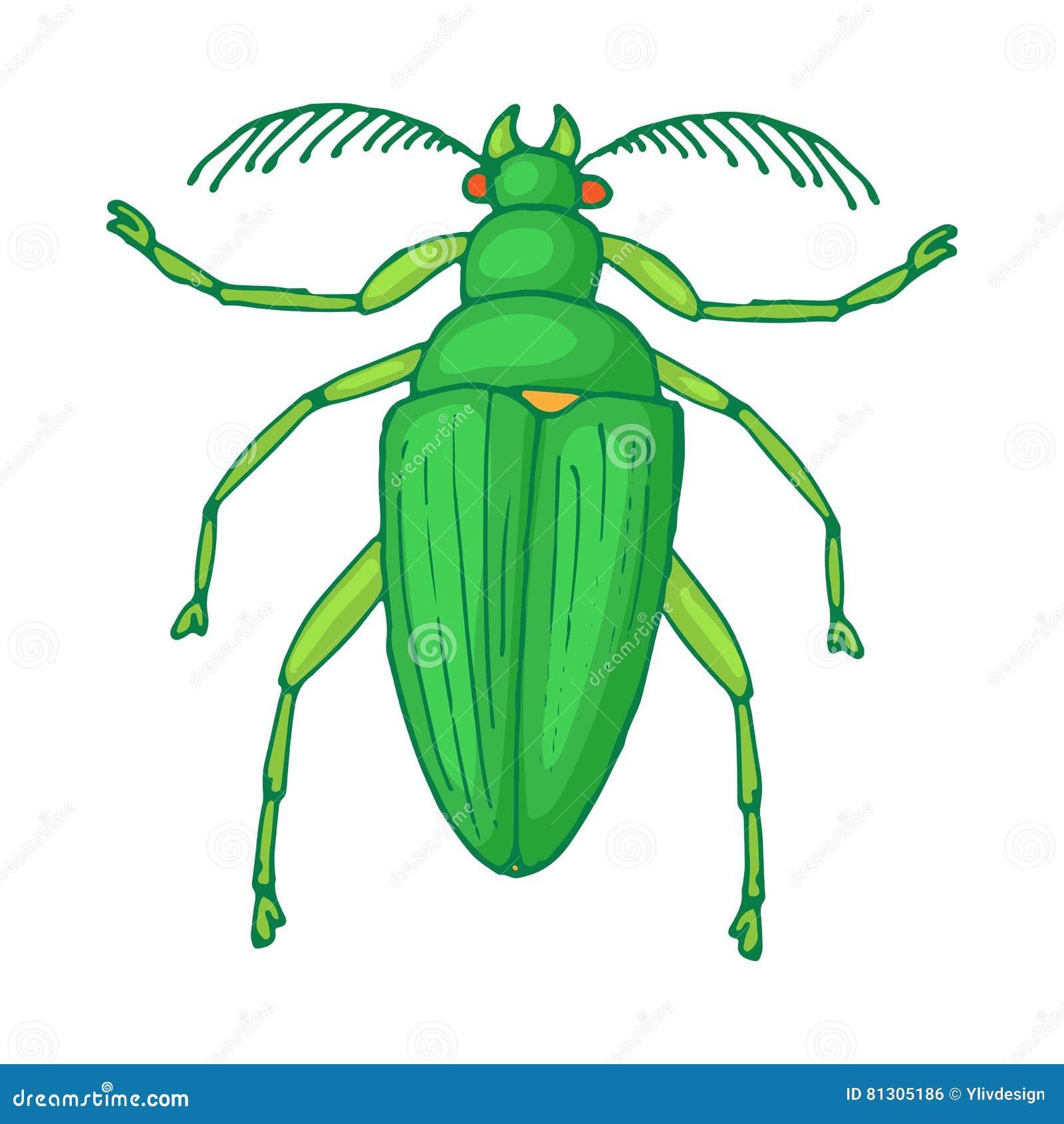 Icône d insecte d insecte, style de bande dessinée