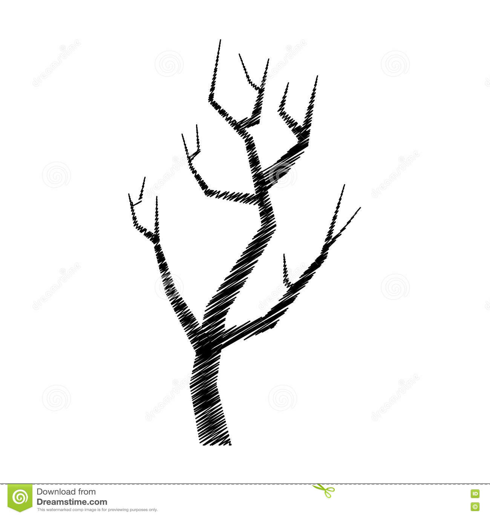 Ic ne d 39 isolement par dessin de main de branche d 39 arbre - Branche arbre dessin ...