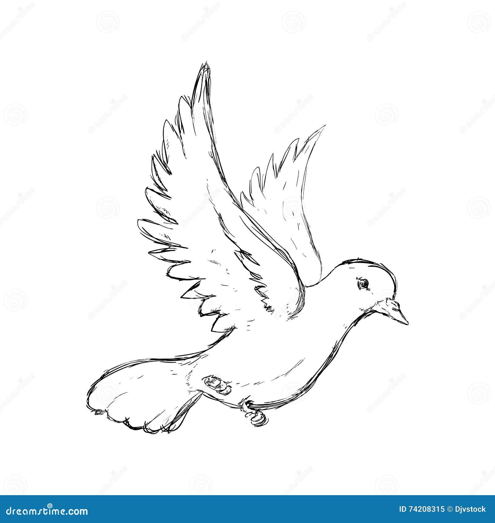 Icone De Colombe Conception D Oiseau Et De Paix Dessin De Vecteur Illustration De Vecteur Illustration Du Dessin Icone 74208315