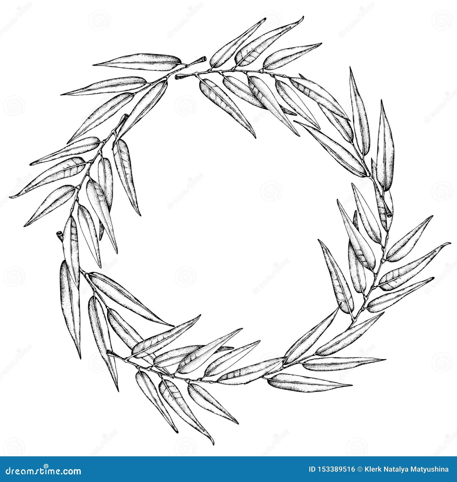 Ic?ne de guirlande de laurier Embl?me fait de branches de laurier Le laurier part du symbole des usines olives de haute qualit? S