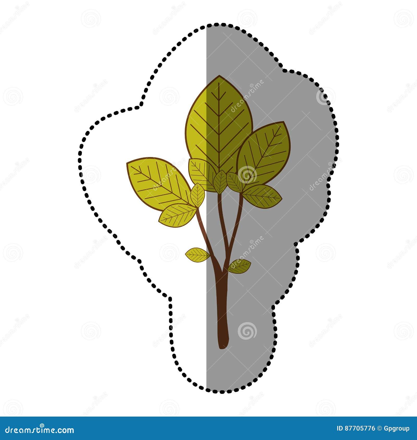 Icône naturelle d arbre de vert de chaux