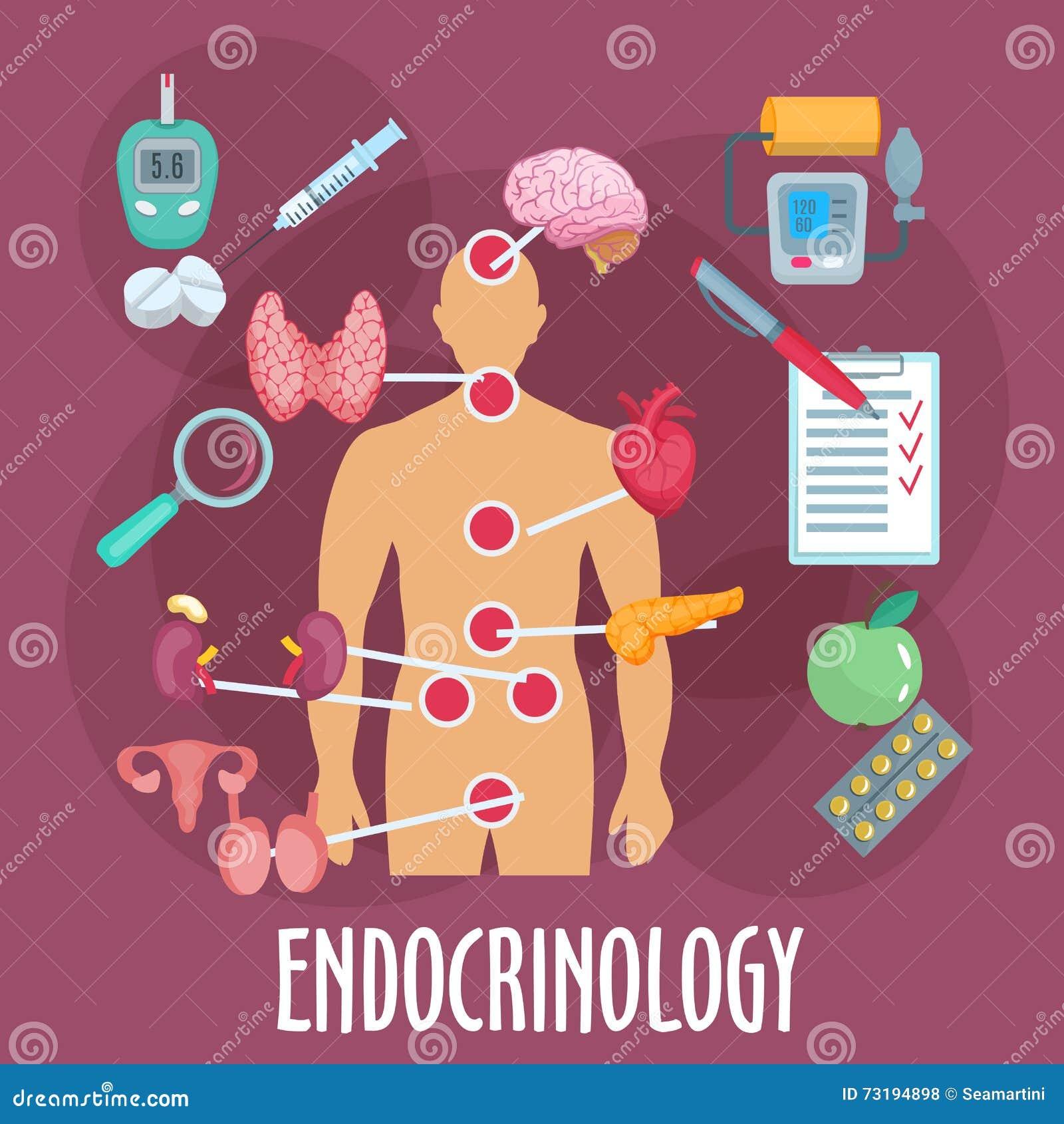 Icône Plate D'endocrinologie Et De Système Endocrinien Illustration ...