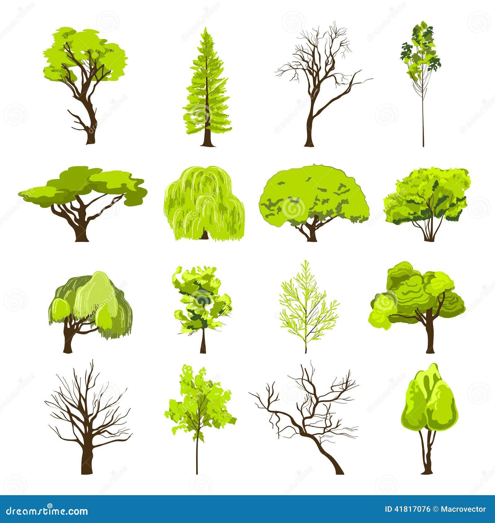 Ic nes d 39 arbre de croquis r gl es illustration de vecteur - Croquis arbre ...