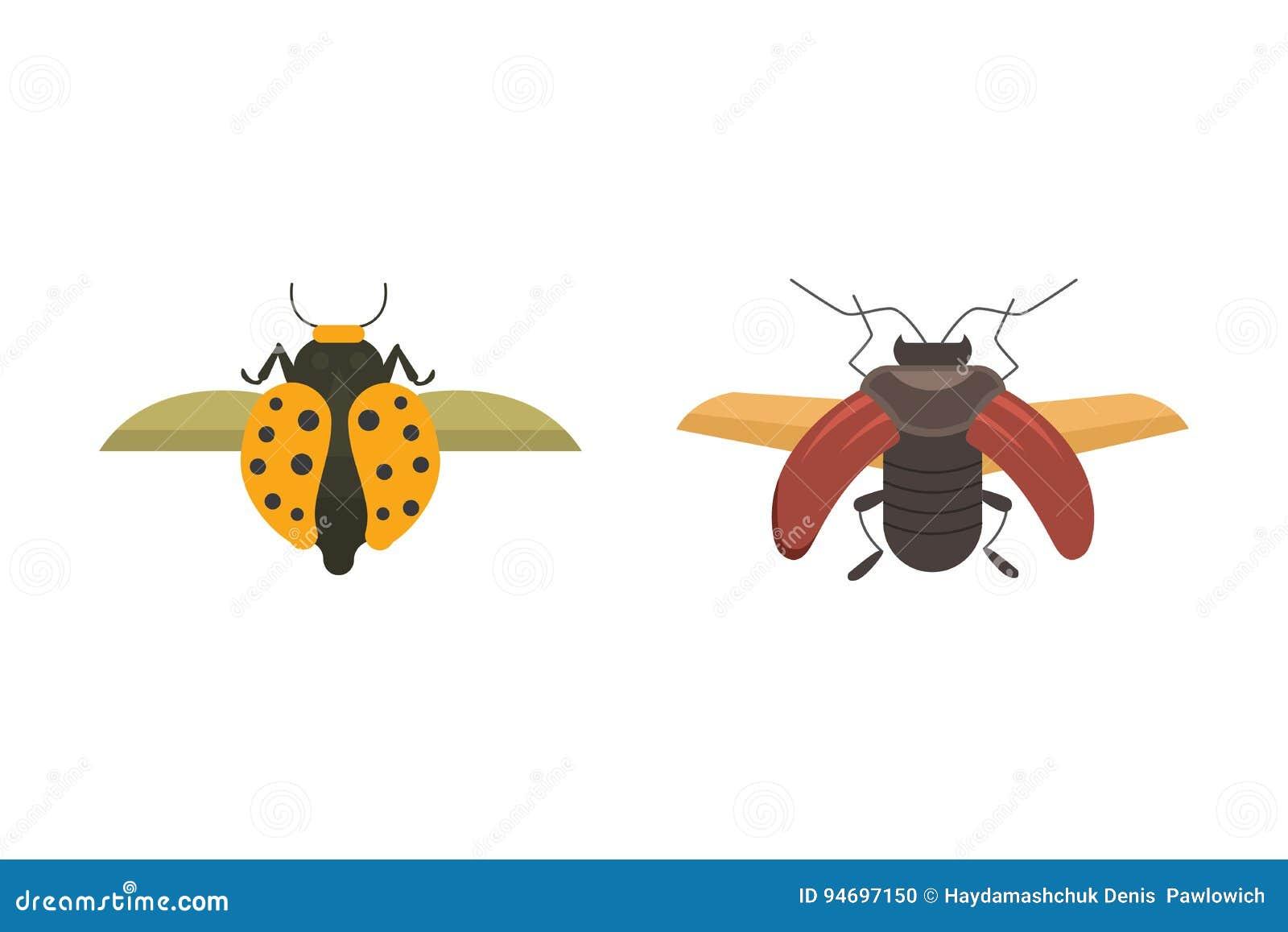 Icônes plates de conception de vecteur de style d insectes Illustration de scarabée de nature de collection et de bande dessinée