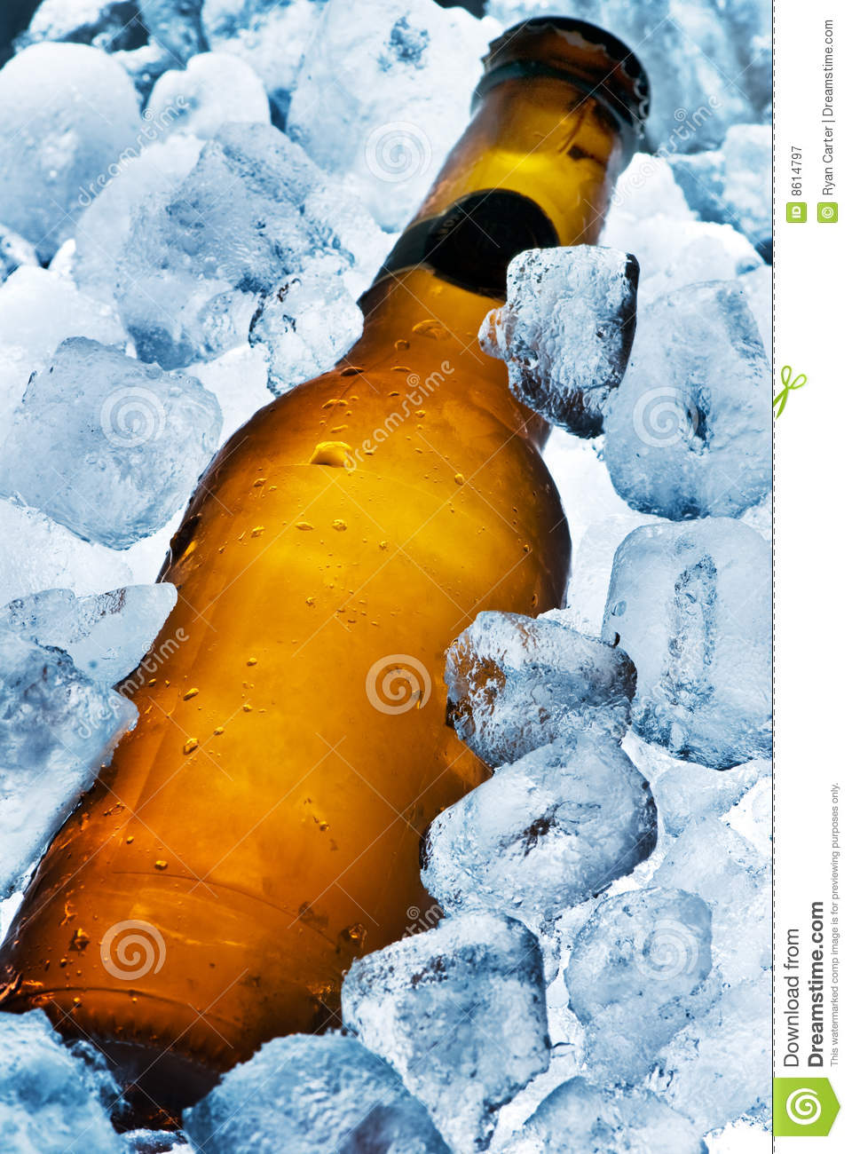 Ice Cold Beer stock image. Image of cooler, glass, brew ...