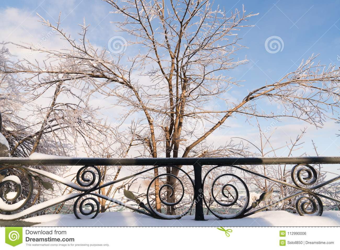 Ice-covered trees at Niagara Falls, Canada in winter