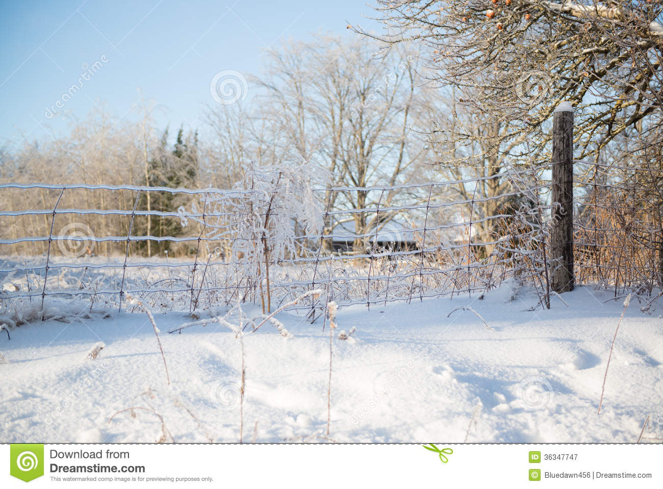 ice covered wire fence sunny winter day royalty free stock