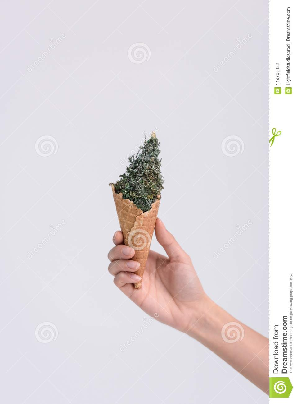 Ice Cream Cone With Christmas Tree Stock Photo - Image of holiday ...