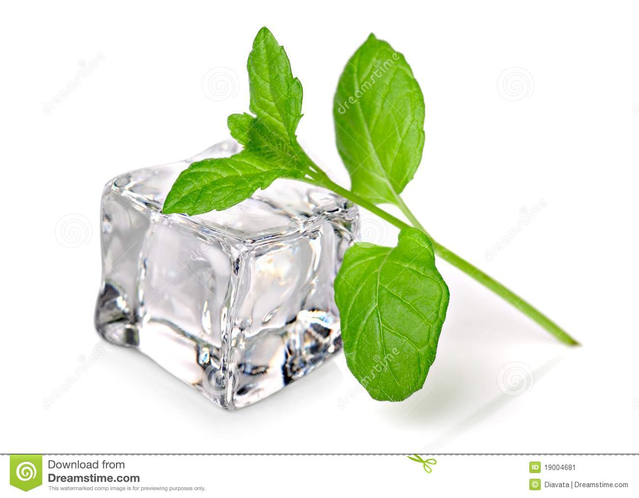 Ice Cube With Fresh Mint Stock Image - Image: 19004681