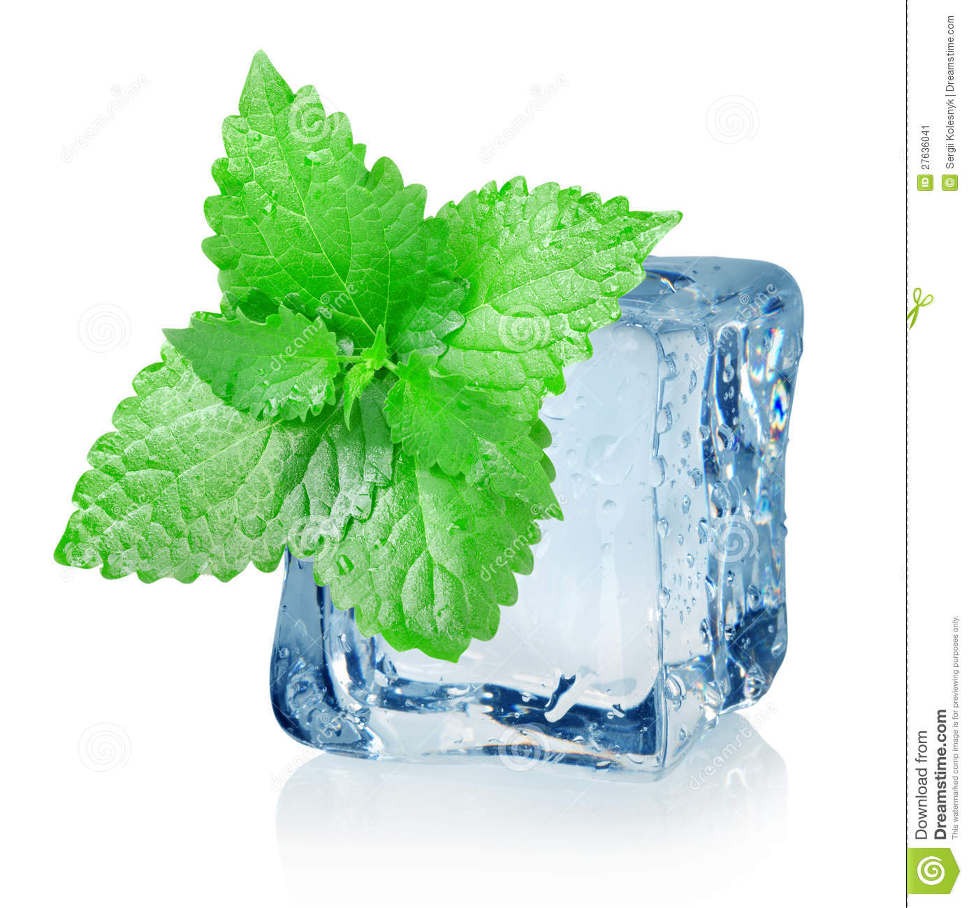 Ice Cube And Mint Stock Image - Image: 27636041