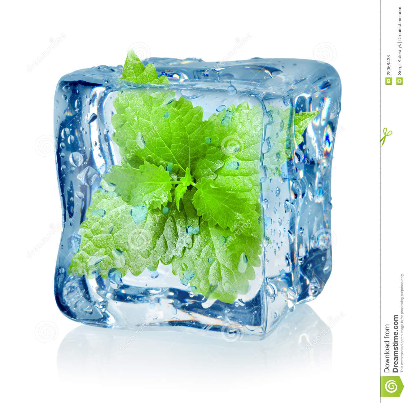 Ice Cube And Mint Royalty Free Stock Photos - Image: 28068438