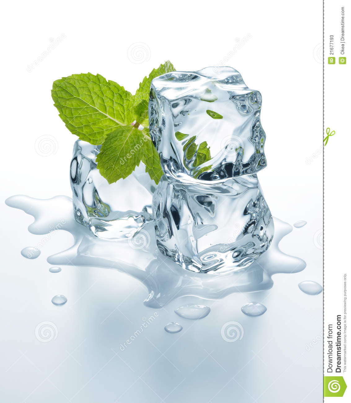 Ice Cubes With Mint Stock Photos - Image: 21677193