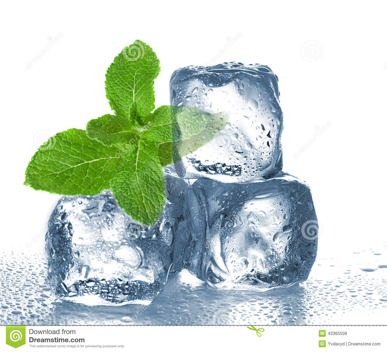 Ice Cubes And Mint Stock Photo - Image: 43365509