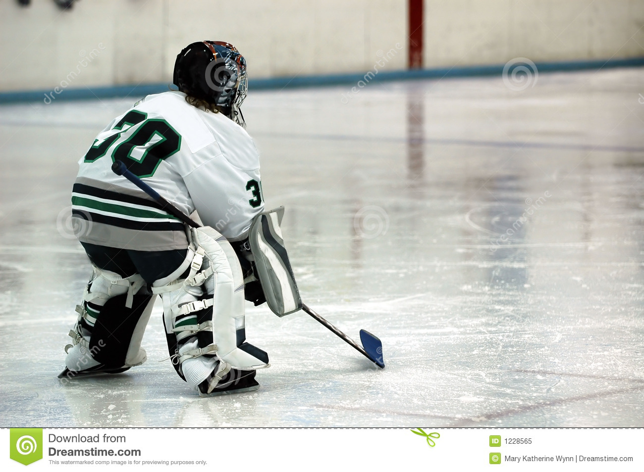 Ice Hockey Goalie Royalty Free Stock Photo - Image: 1228565