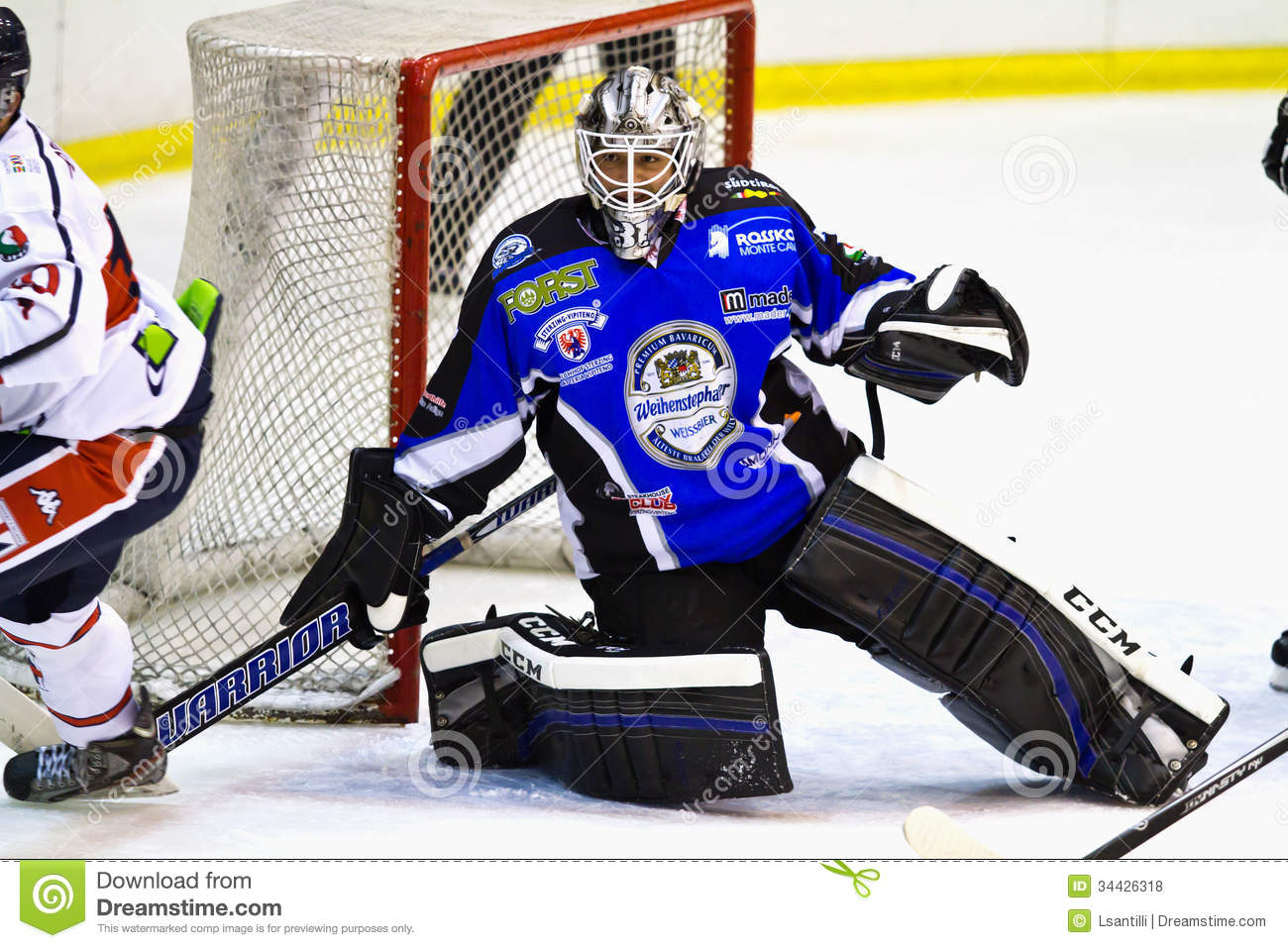 an analysis of a goaltender in ice hockey Mega programs have been designed to develop and refine a goaltender's skills in a challenging and purposeful environment the dynamic coaching staff includes multiple collegiate goalie coaches who bring a unique blend of coaching and playing experience ensuring every student receives a quality training experience.