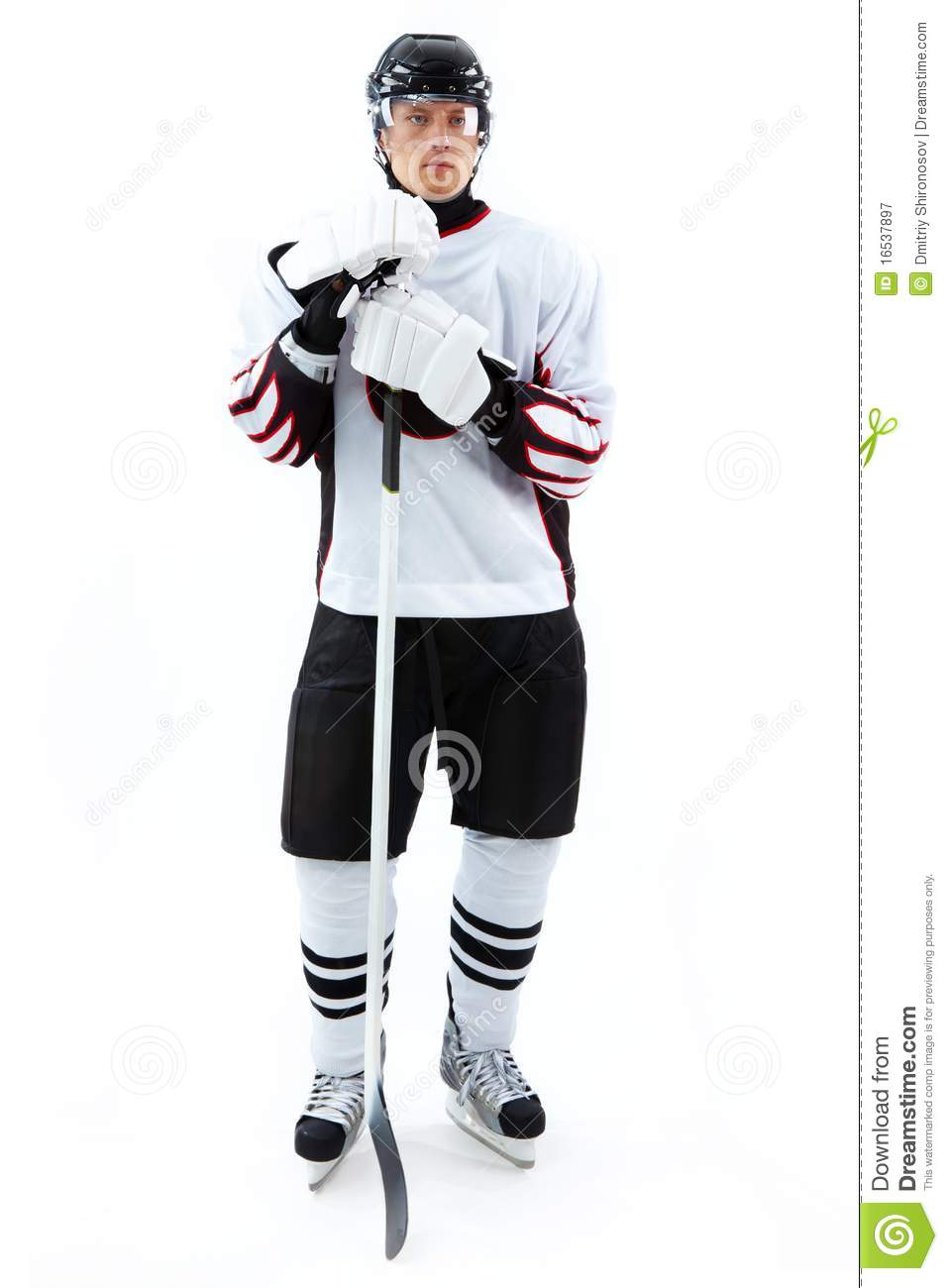icehockey player royalty free stock photography image