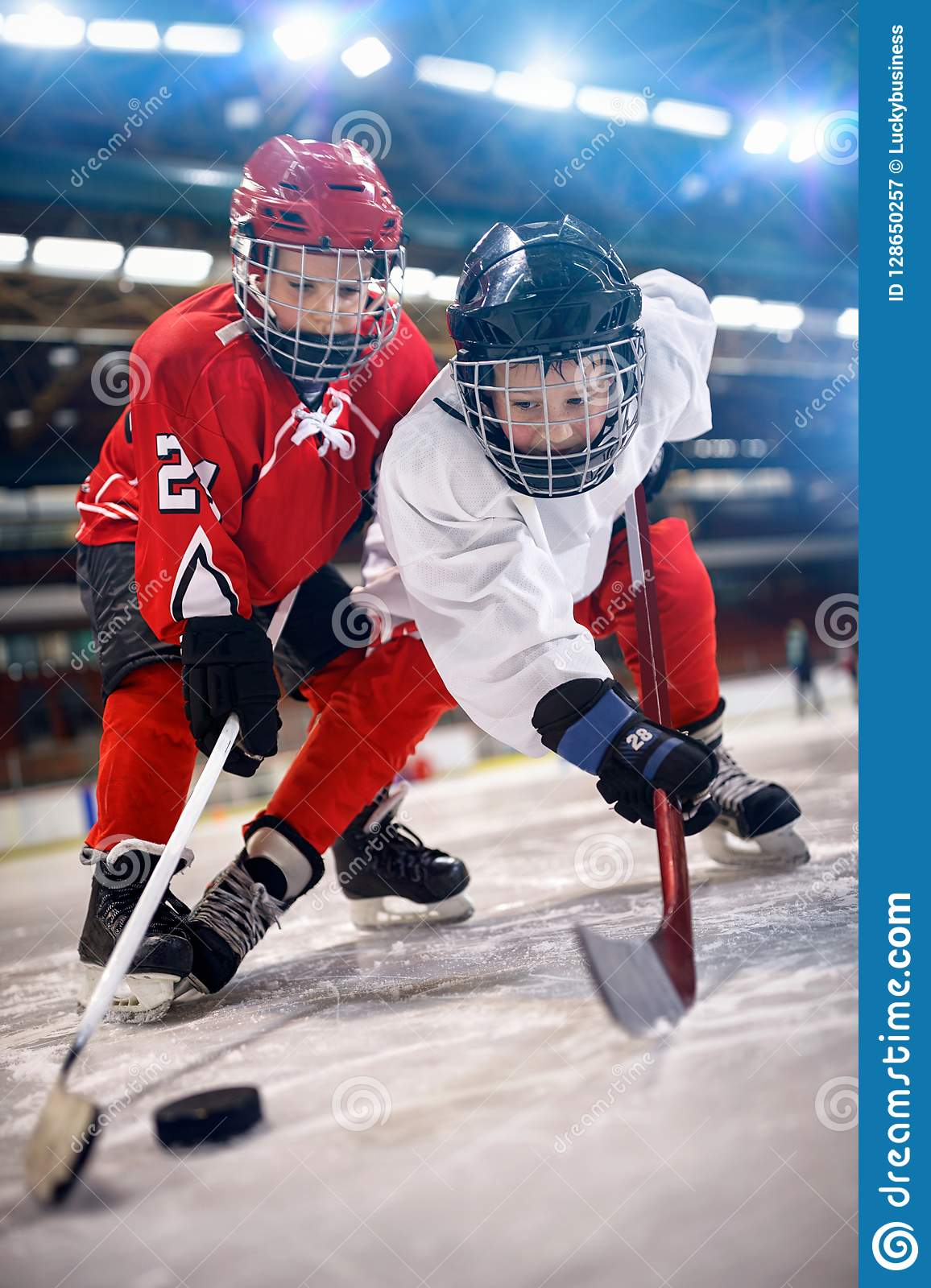 Ice hockey player in sport action on the ice