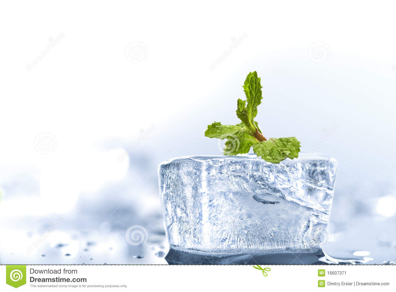 Ice Mint Stock Image - Image: 16607371