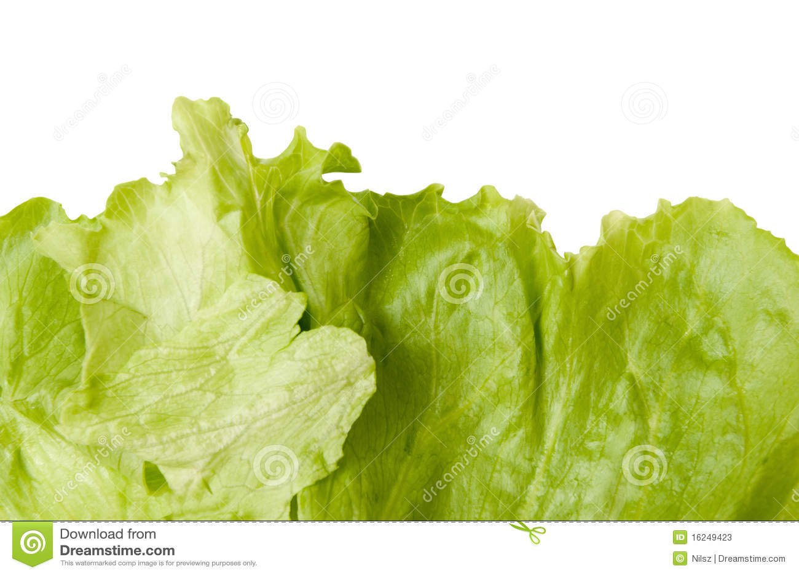 how to cut an iceberg lettuce