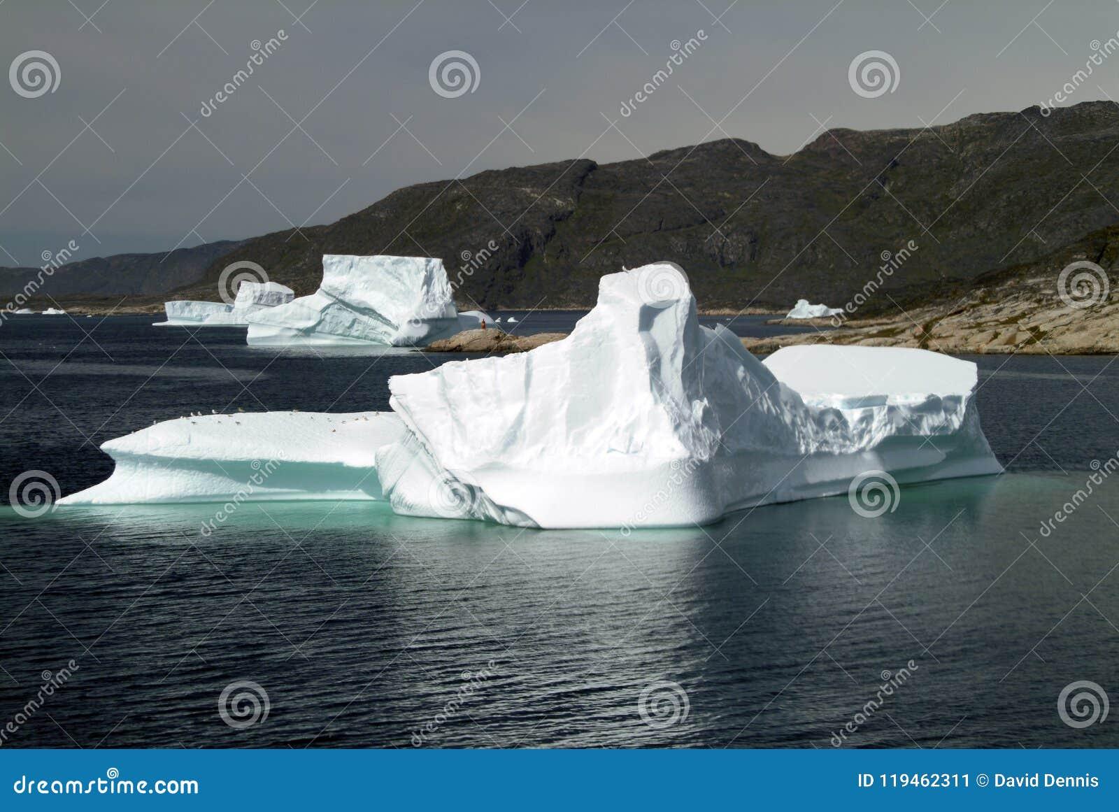 Icebergs que hacen cola para derretir en el fiordo de Hvalsey en la costa oeste de Groenlandia