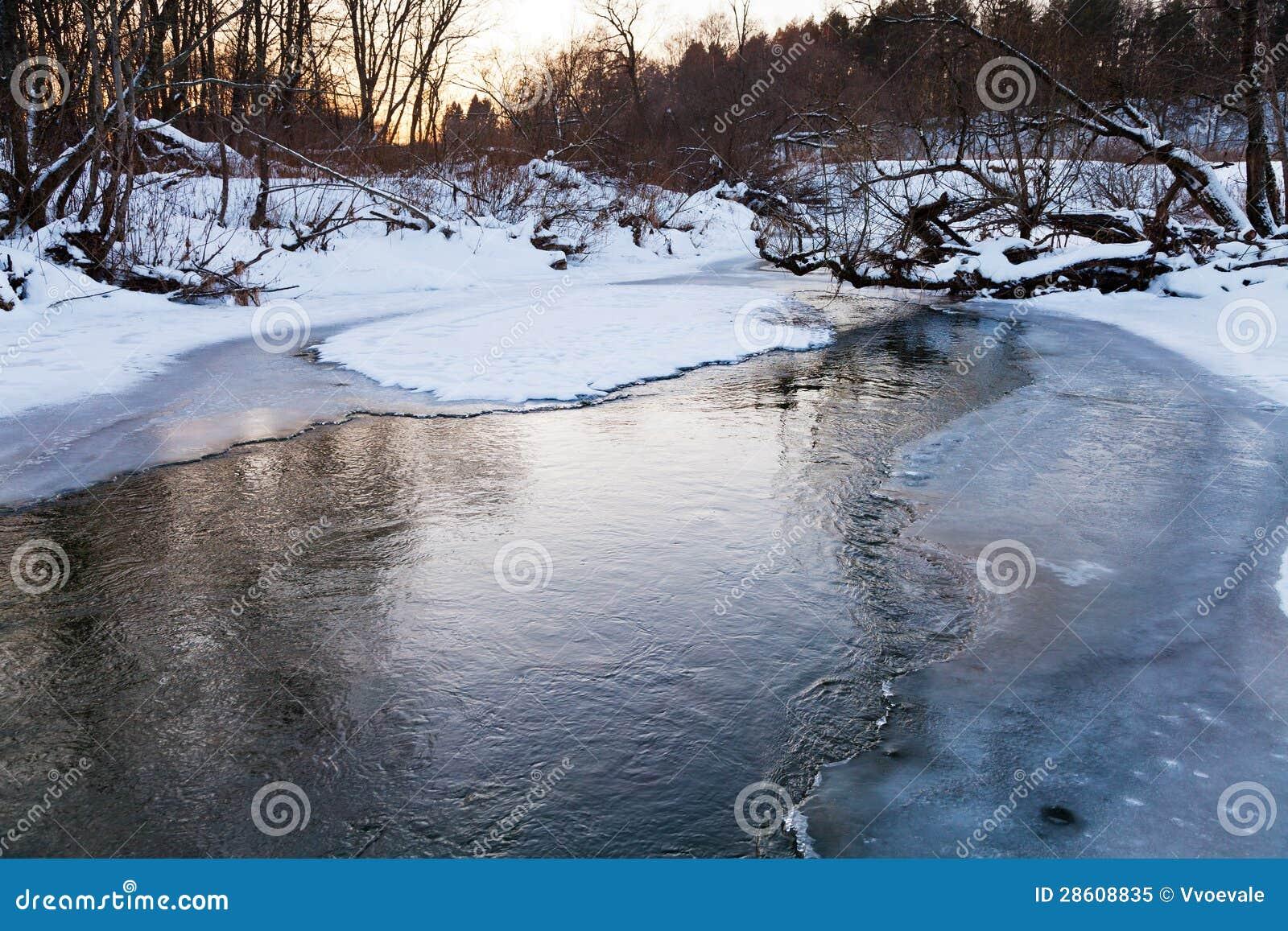 Icebound packar ihop av skogdamm
