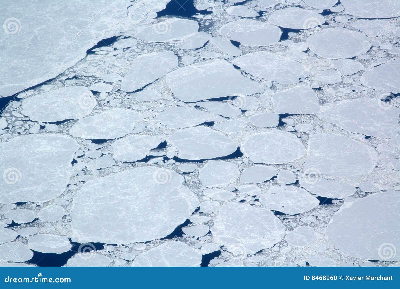 Iced hav