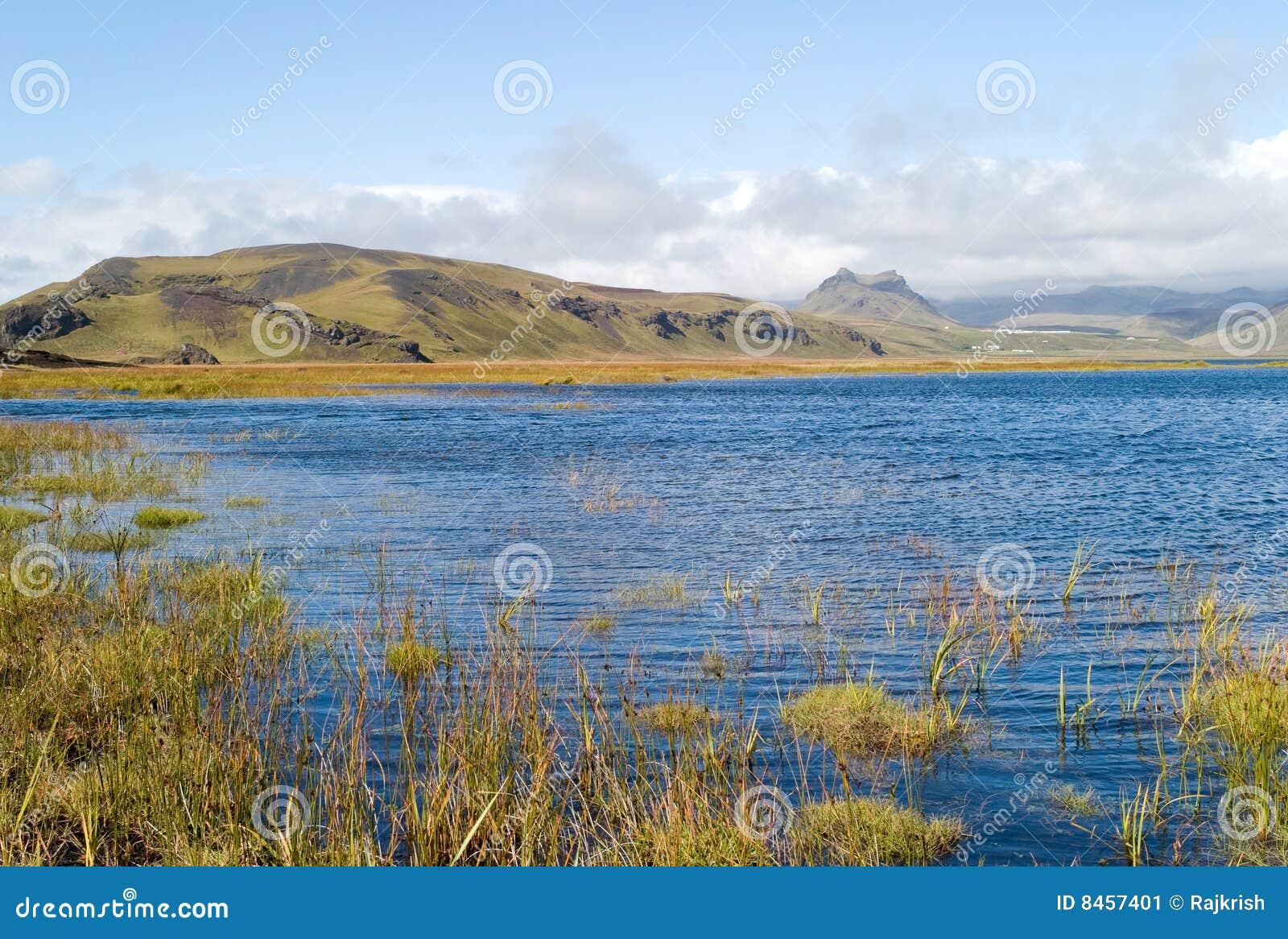 Icelandic liggande