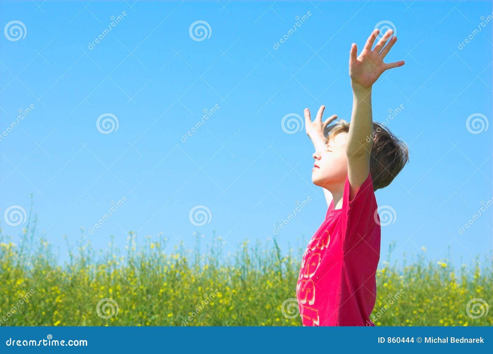 Ich Bin Glücklich Stockfoto Bild Von Gras Kindheit Junge 860444