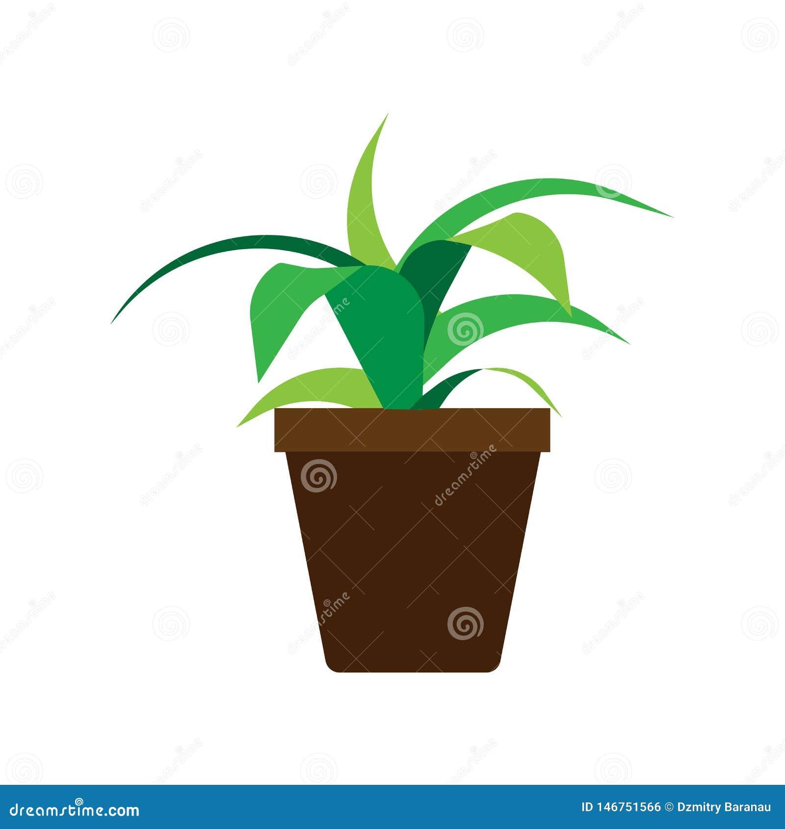 Icona decorativa di giardinaggio floreale di vettore dell elemento del vaso da fiori Vaso interno dell ufficio dell illustrazione